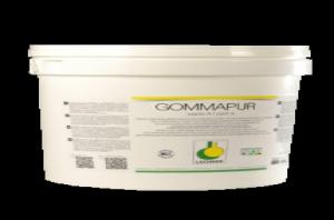 Клей для пробки Lechner Gommapur двухкомпонентный